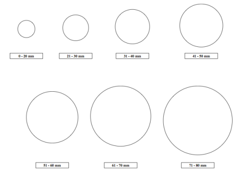 Fragment_Circles_Take_2