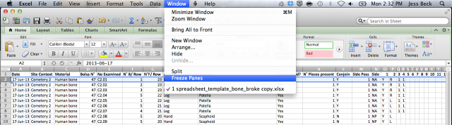 Freeze_Panes_Solution