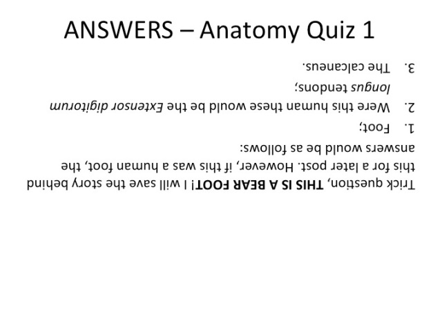 Answers_Anatomy_Quiz_1