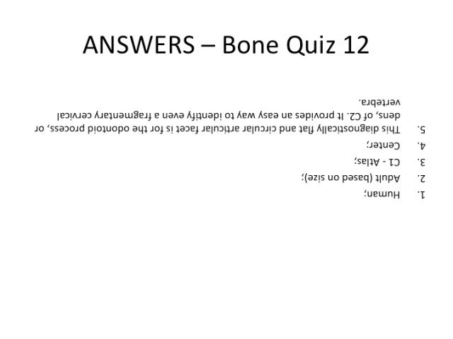 Bone Quiz 12 Answers