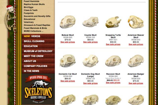 Skulls Unlimited
