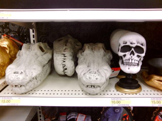 Gator skulls